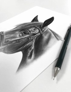 Pferdezeichnung mit Trense