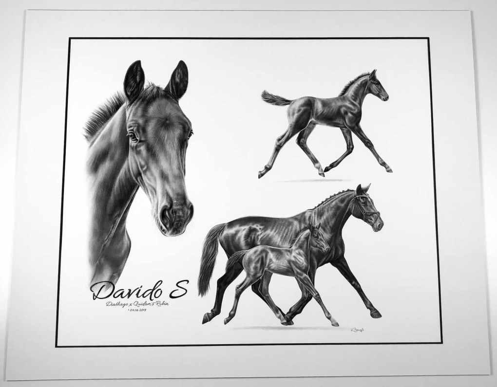 Kunstdruck Pferd Zeichnung referenz pferdezeichnung collage