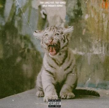 Tory Lanez Feat. Trey Songz - Wild Thoughts
