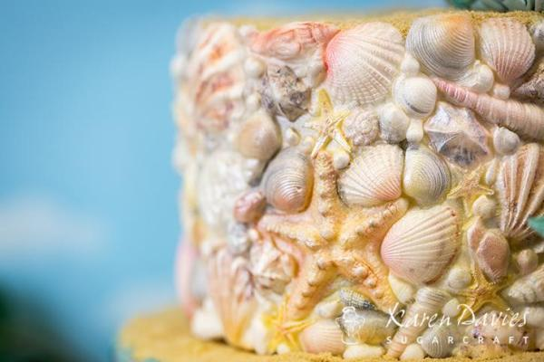 Sugar Shells Mould