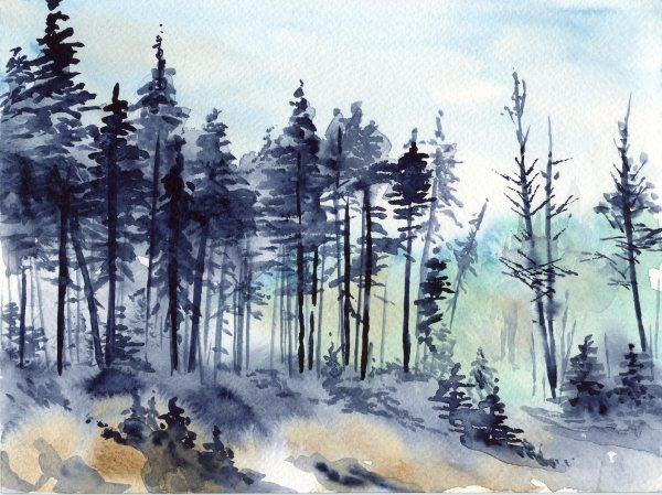 Watercolour Basics Karen Gillmore Art