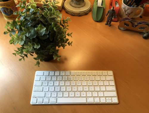 keyboard and plant, 5 Reasons Why NaNoWriMo Is Not for Me, https://karenhugg.com/2018/10/29/nanowrimo-is-not-for-me, Karen Hugg #nanowrimo #NationalNovelWritingMonth #books #novel #reasonsnottodonanowrimo