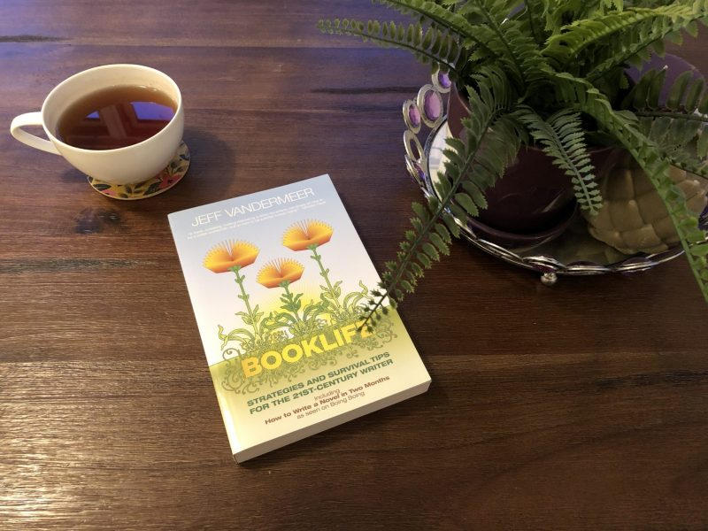 My Struggle with Social and Solitary Time, Karen Hugg, Booklife, Jeff Vandermeer, https://karenhugg.com/2016/05/20/booklife #Booklife #books #JeffVandermeer #writing #nonfiction #writinglife