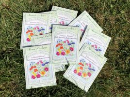 seed packets, Karen Hugg, www.karenhugg.com/news #seeds #bees #giveaway #TheForgettingFlower #books #novels #plants #gardening #flowers #wildflowers