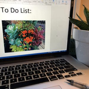 My October List: Media Activity in a Fun Flurry, Karen Hugg, https://karenhugg.com/2019/10/31/october-list #books #writing #TheForgettingFlower #October #todolist #interview #podcast