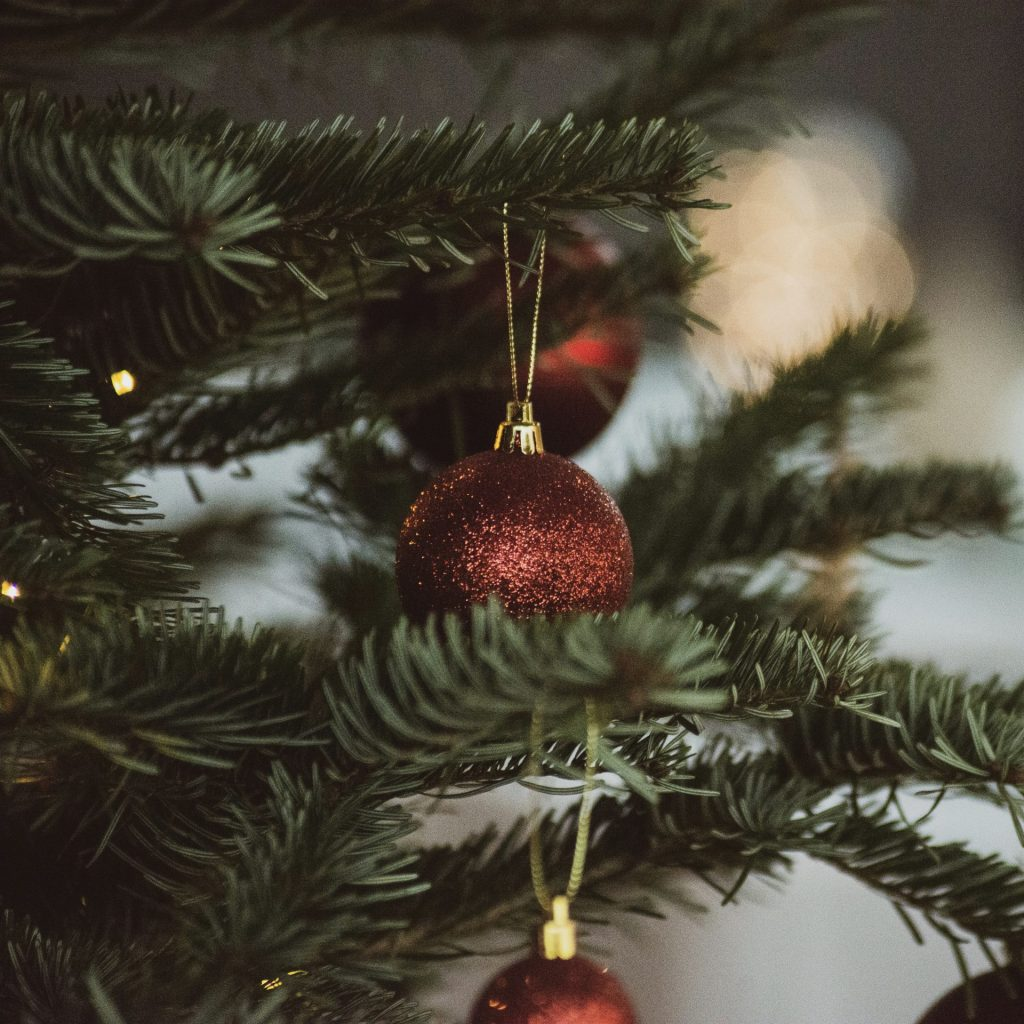 Christmas Tree, Fake or Real, How to Help the Environment with a Christmas Tree, Karen Hugg, https://karenhugg.com/2020/01/21/christmas-tree/ #fakeorrealChristmastree #Christmastree #Christmas #trees #treefarm
