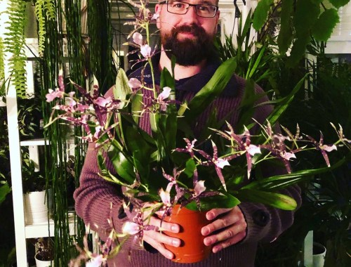 Tommy Tonsberg, How to Grow Amazing Houseplants and an Outstanding Garden in Norway, Karen Hugg, https://karenhugg.com/2020/02/05/how-to-grow-amazing-houseplants-and-an-outstanding-garden-in-norway/ #Norway #gardening #plants #garden #houseplants #Zone7