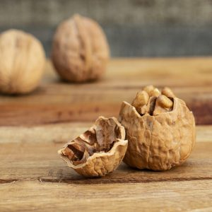 Broken Walnut, Changing Your Life From Broken to Broken Open, Daily Stress Releaf, Karen Hugg, https://karenhugg.com/2021/02/22/broken-to-broken-open, #dailystressreleaf #plants #stress #destressing #mentalhealth #inspiration #changingyourlife #transformingyourself #happiness #DavidBrooks #TedTalk