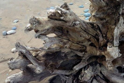 Lake Superior Driftwood, Karen Huss