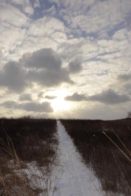 Winter Path, Karen Huss