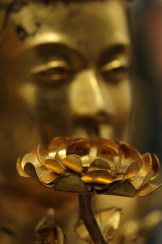 goldenbuddhamod