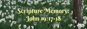 Front Porch Bible Study Series by Karen Jurgens