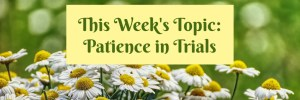 Heartwings Front Porch Bible Study Series This Week's Topic Patience in Trials