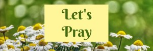 Heartwings Front Porch Bible Study Series Week 24 Parable of the Sower Let's Pray by Karen Jurgens