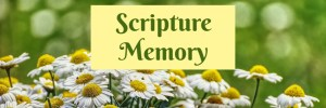 Heartwings Front Porch Bible Study Series Week 25 Patience by Karen Jurgens