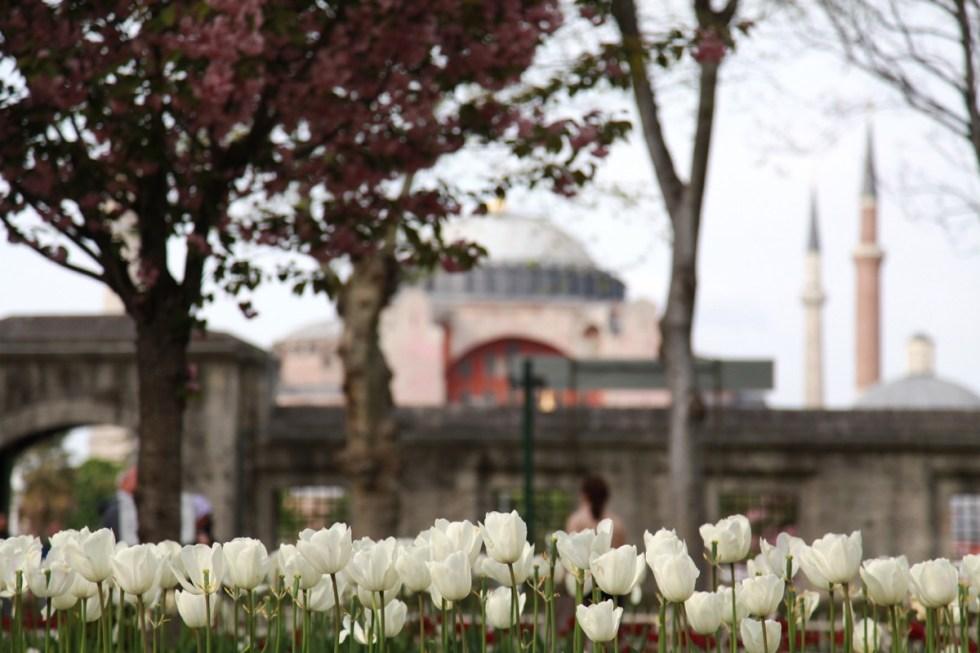 turkey-hagia-sofia-istanbul-1