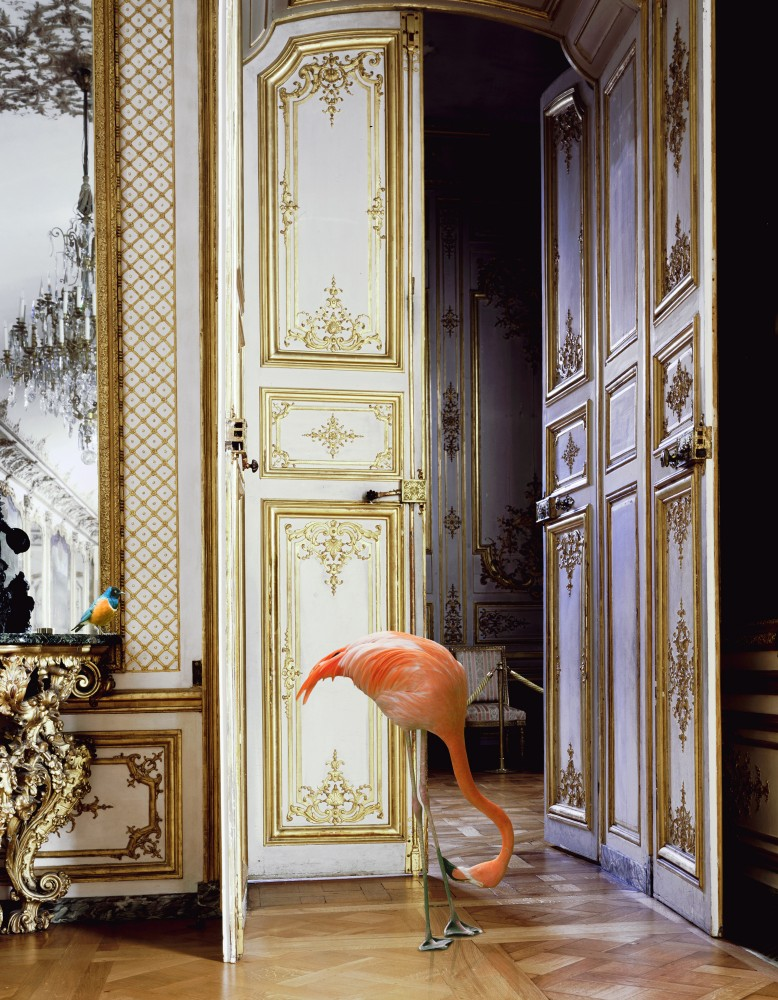 https://i0.wp.com/karenknorr.com/wp-content/uploads/2014/07/The-Battle-Gallery-778x1000.jpg