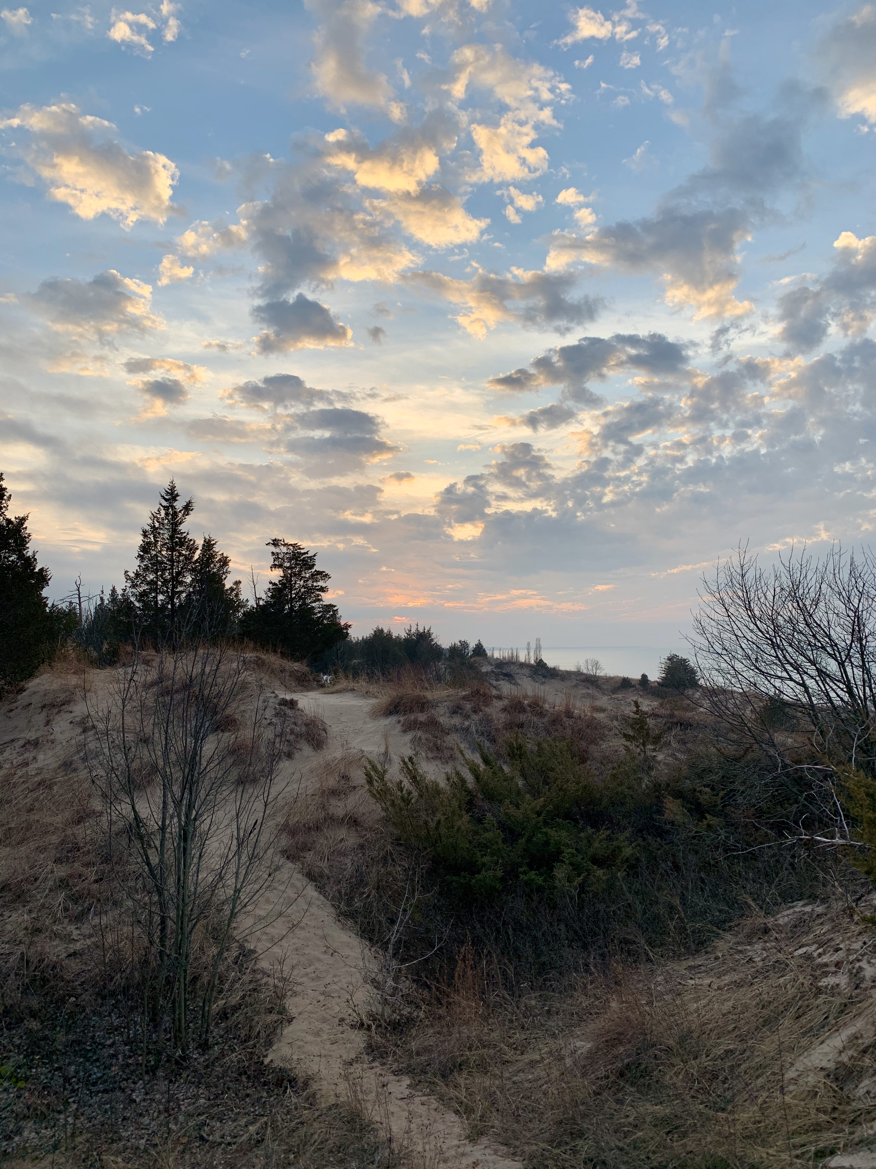sandy dunes and a sunset