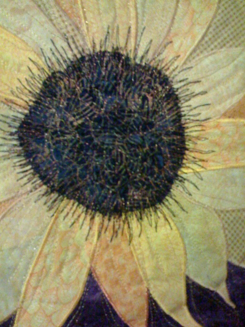 sunflower upclose