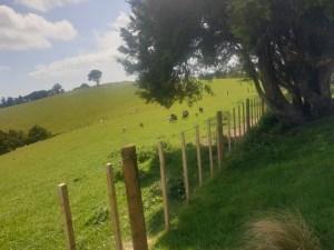 Rich farming country