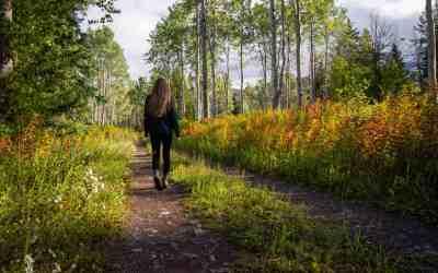 Walking: Take that First Step