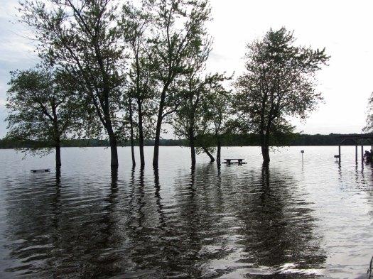Flooded river silhouette © 2014 Karen A Johnson