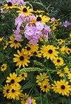 Cascade of flowers © 2014 Karen A. Johnson