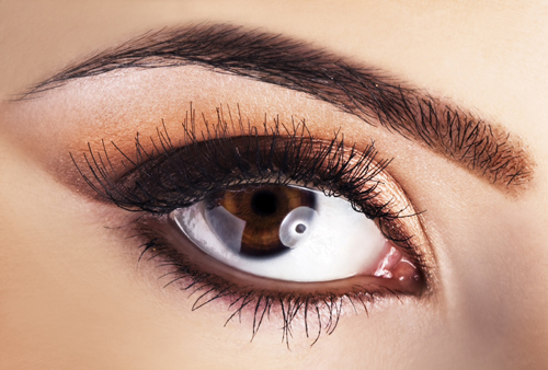 Frame Your Eyes – About Eyebrows