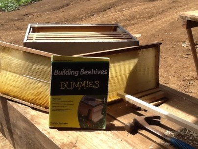 Everything we need to know about building our hives