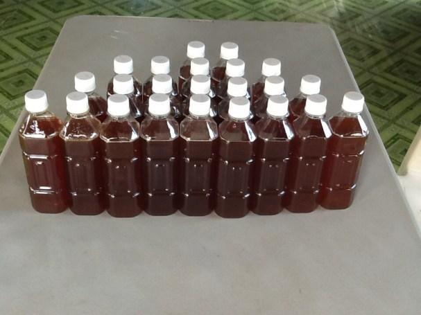 23 x 500ml bottles of honey
