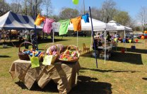 Clydefest-2014-field-6