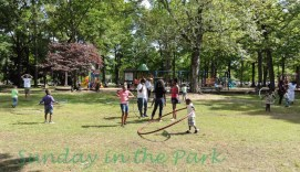 Hooping Herman Park 13