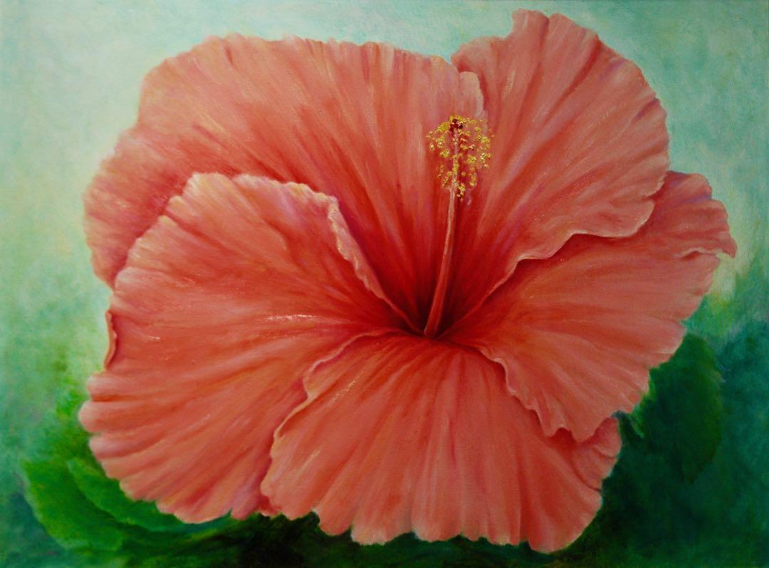 Giagantis Hibiscus