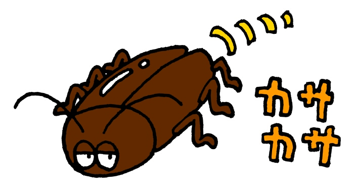 ゴキブリは一匹見たら何匹いる?その答えにネットでは「嘘だ!!」の声
