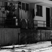Nedjeljno popodne u Srebrenici: Amar i Nikola