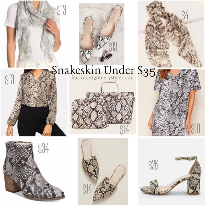 Fall style guide snakeskin print python