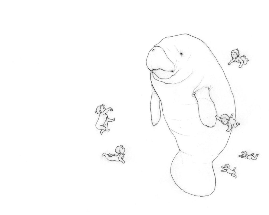 Karina Kalvaitis Drawings - all rights reserved