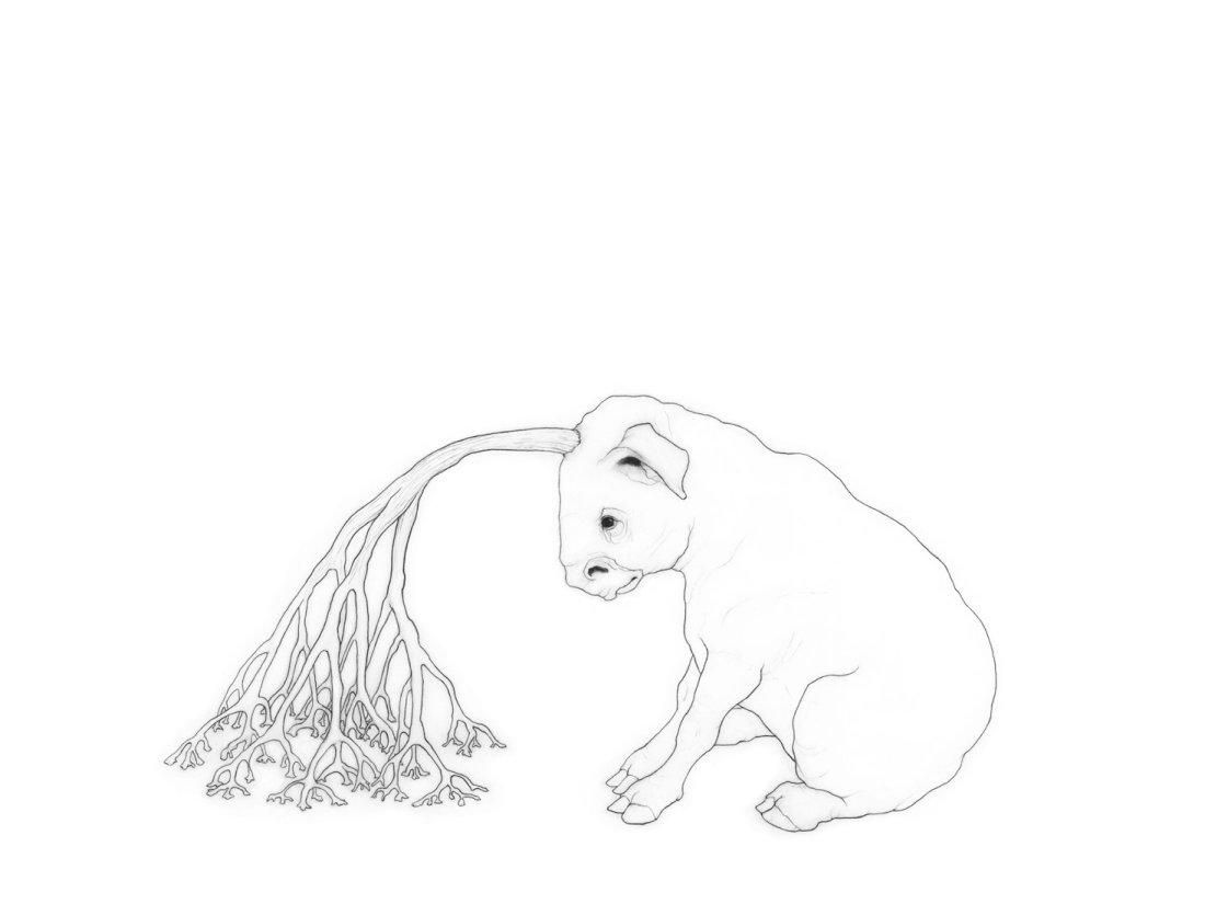 Imaginary horned animal drawing - Karina Kalvaitis - Victoria, BC, Canada