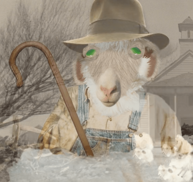 Sheeple Montage