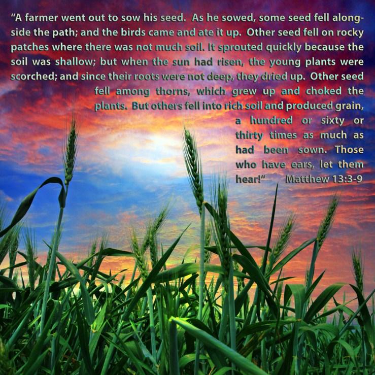 Matthew 13:3-9 – karinforeman.com