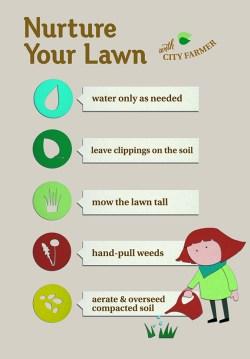 Nurture Your Lawn