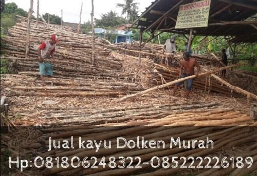 Jual Kayu Dolken Gelam Area Karawang – Purwakarta