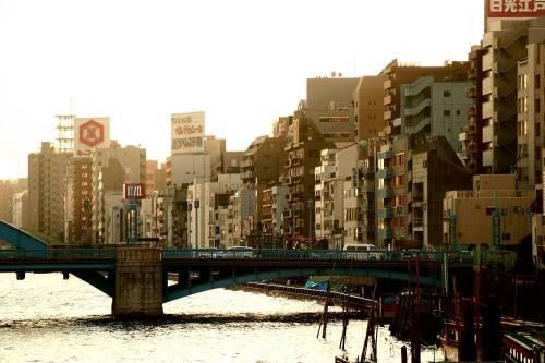 Mau Kuliah di Jepang? Ini 3 Agen Terpercaya yang Siap Membantu Anda
