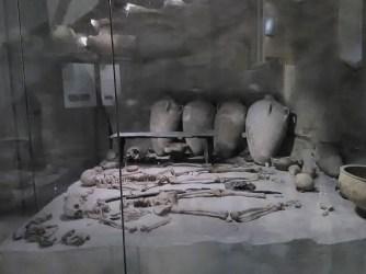 Excavation site exhibit