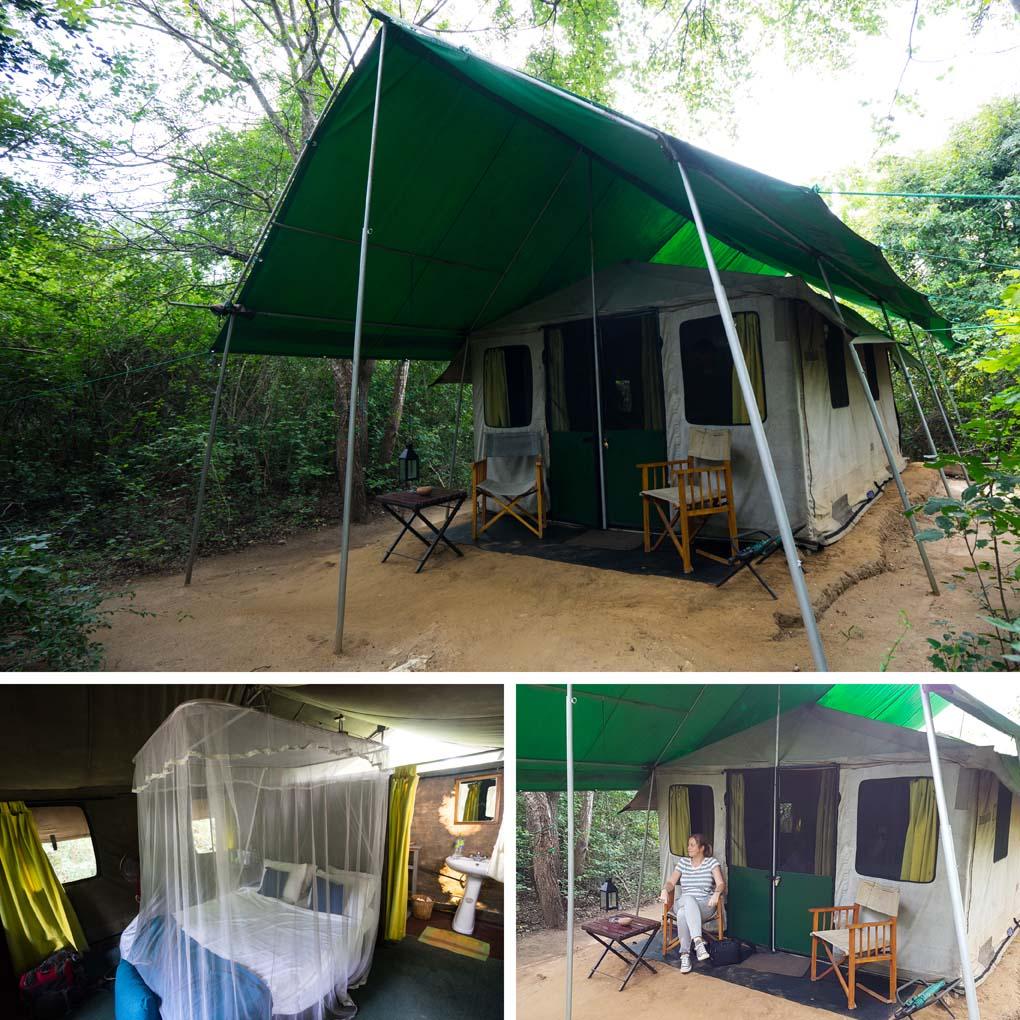 Yala camping