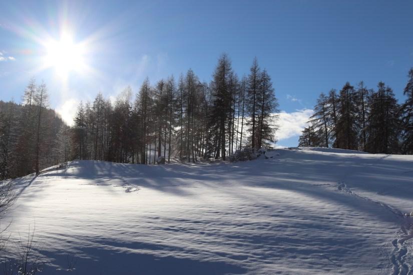 Austrian Alps in Seefeld