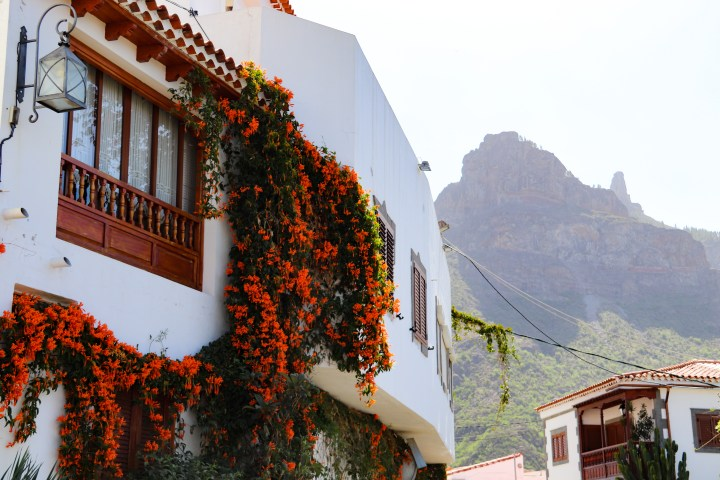 A traditional canarian home in Tejeda with hanging orange flowers arounf the windows. Mountains are visible in the background.