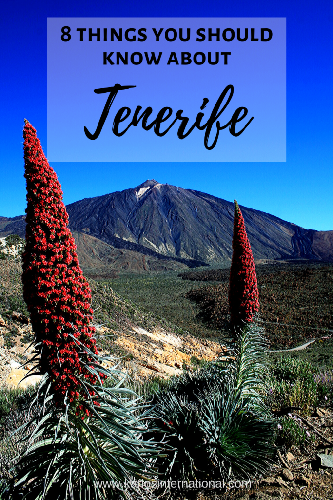 8 things you should know about Tenerife. Pinterest Pin.