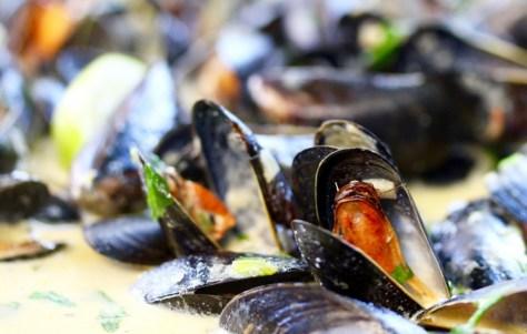 Karlstein musslor