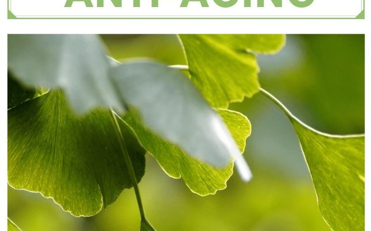 Herbs for Natural Anti-Aging